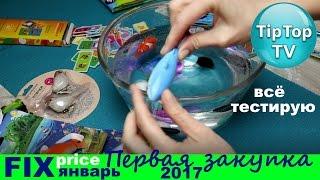 ФИКС ПРАЙС ЯНВАРЬ❤ПЕРВАЯ ЗАКУПКА 2017❄FIX PRICE//ТИП ТОП ТВ