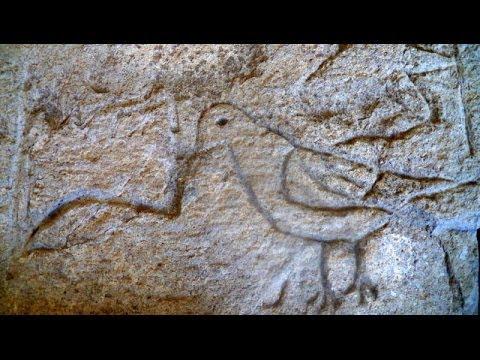 Definecilikte Kuş İşareti