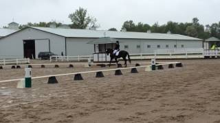 Callie and Don Philippo- 4th level freestyle