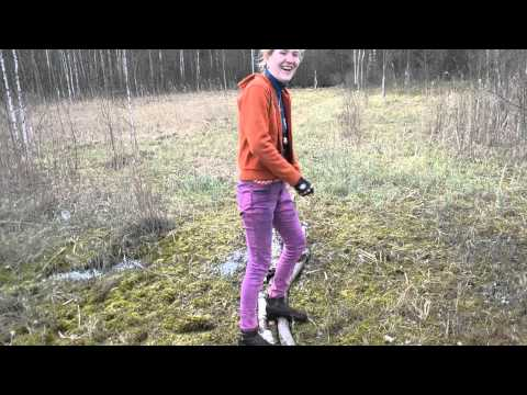 Перец острый (чили, декоративный и .): выращиваем дома