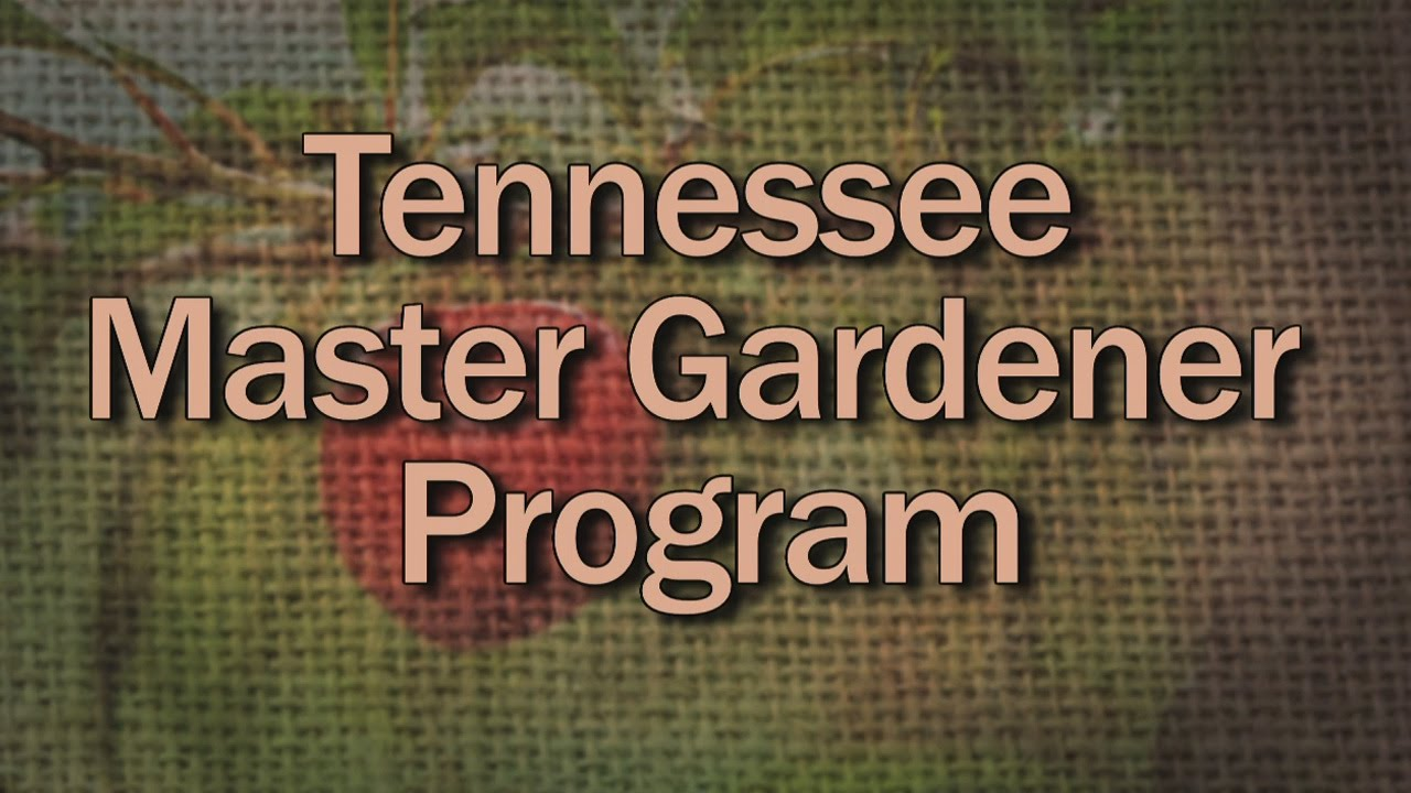 Tennessee Master Gardener Program - Family Plot - YouTube