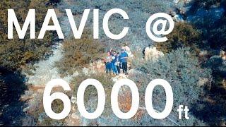 Flying DJI Mavic PRO DRONE at 6000ft Elevation - Vlog #211