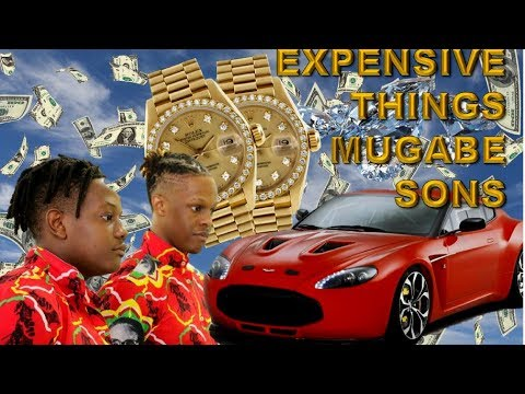 9 Expensive Things Owned By Robert Mugabe's Sons