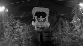 Kollegah & SpongeBozz - Halleluja ft. Farid Bang (Official Video)