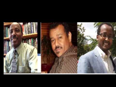 National Reconciliation Panel Discussion with Radio Voice of Eritrea