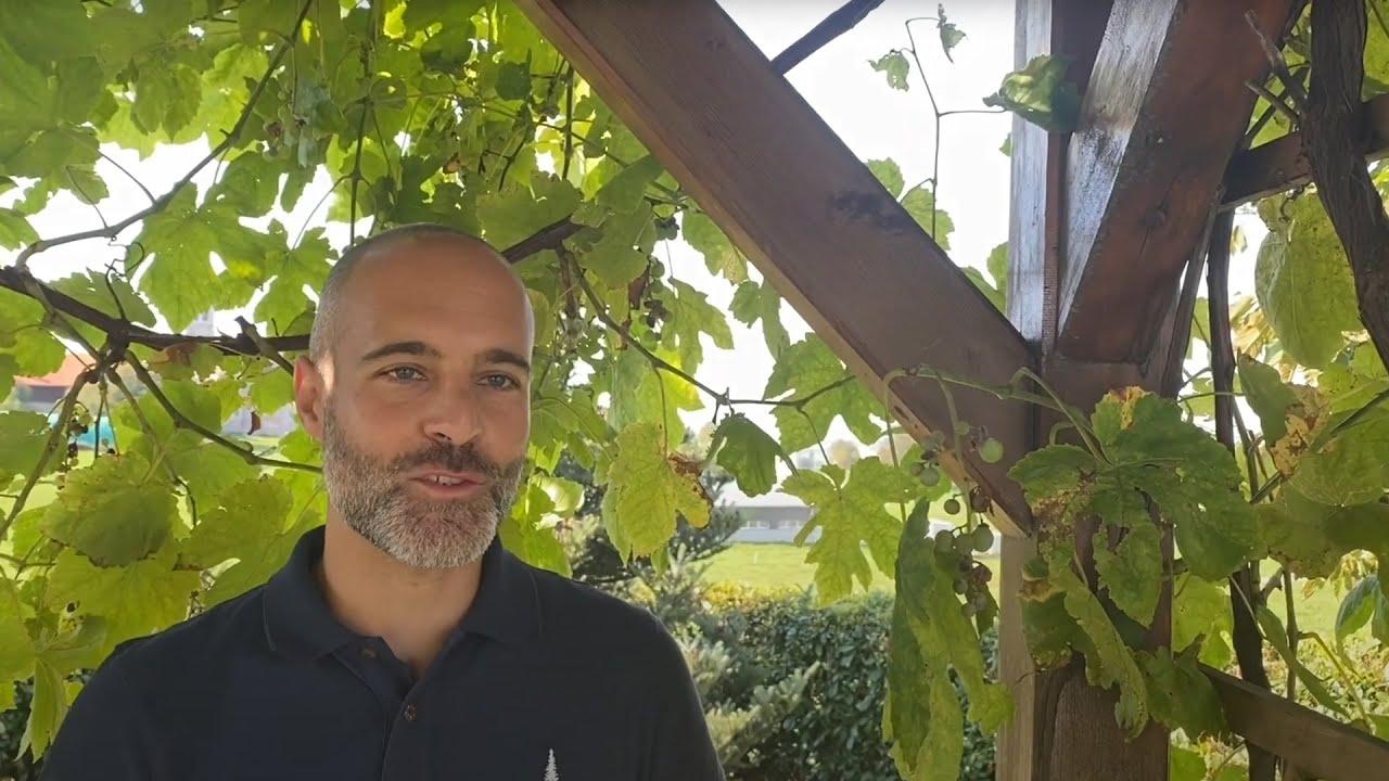 Lauréat «Prix SEP» 2020 - Jérôme Beaud