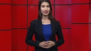 पाल्पामा स्थानीय तह नै अघि स¥यो सामूहिक पाडापालनमा,किसान बने हर्षित - NEWS24 TV