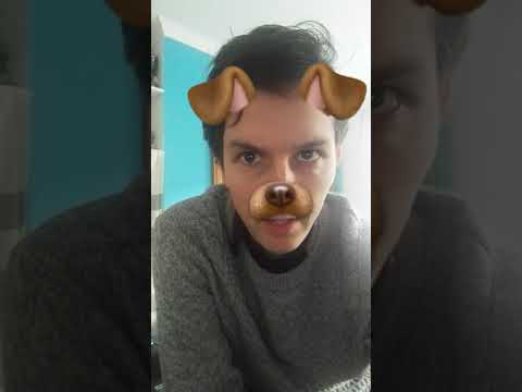 Pointless Snapchat Poem - The Day I Turned into a Dog