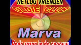 MARVA - RODE ROZEN IN DE SNEEUW