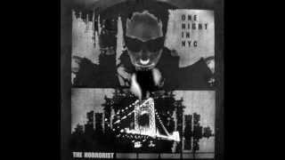 Horrorist, The - One Night In NYC  (Chris Liebing Remix)