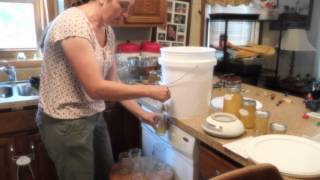 Bottling the honey harvest- tips and tricks