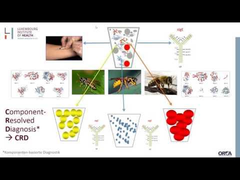 Webinar Molekulare Allergene  Ein entscheidender Schritt zu mehr Präzision in der Diagnosti