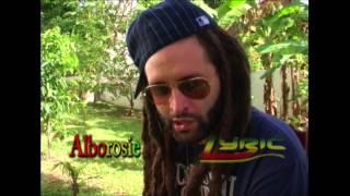 Alborsie -  Babylon thief my herb!