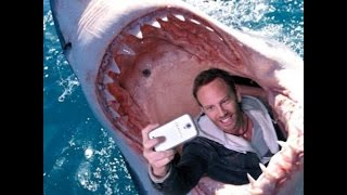 Top Funny Videos Most Dangerous Selfies Ever! Funny Prank..