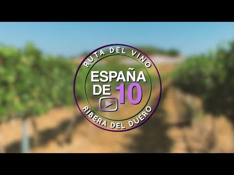 Ruta del vino Ribera del Duero: 10 básicos