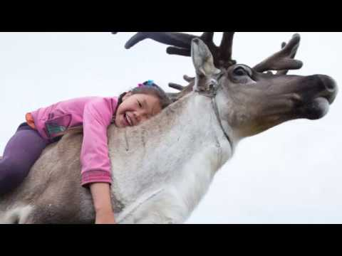 I Took Photos Of Adorable Kids With Their Reindeer In The Remote Taiga Mountains Of Mongolia