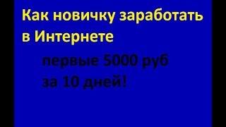 Как новичку заработать в Интернете первые 5000 руб за 10 дней!
