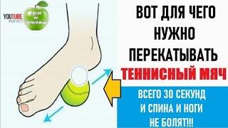 Перекатывай теннисный мяч от боли в спине и ногах