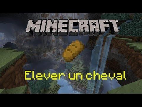 Tuto comment lever un cheval minecraft youtube - Cheval minecraft ...