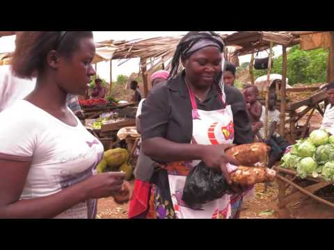 Why do we need to increase nutrition in Cassava?