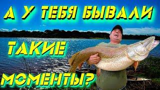 На рыбалку всегда есть силы Приколы на рыбалке Приколы на воде Рыбалка на щуку ВЕСЁЛАЯ РЫБАЛКА