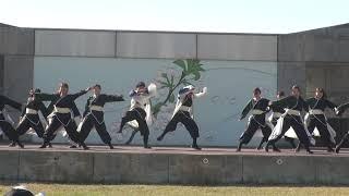 秋田大学よさこいサ-クルよさとせ歌舞輝 井川さくらまつり2019