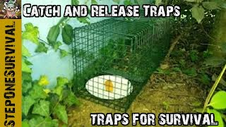 Catch and Release Traps
