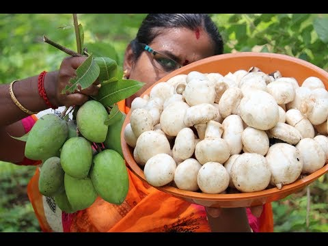 Village Style Green Mango - Mushroom Dum Biryani / Different Taste / Food Money Food