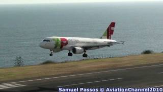 Spotting at Madeira Airport • Afternoon & Night Traffic
