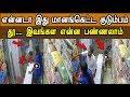என்னடா இது மானங்கெட்ட குடும்பம் தூ இவங்கள என்ன பண்ணலாம் | Latest Tamil Seithigal