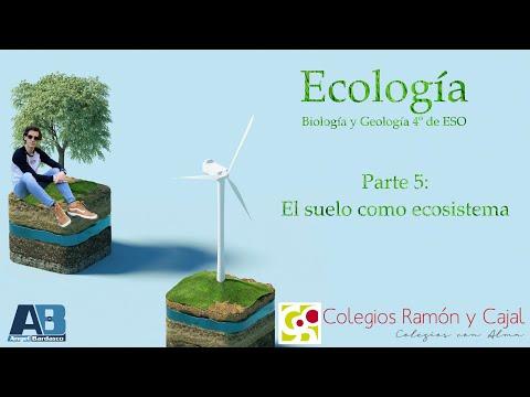 5-ecología.-el-suelo-como-ecosistema---biología-y-geología-4º-de-eso