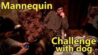 Манекен челлендж с собакой /  mannequin challenge with dog