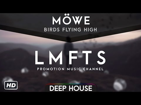 MÖWE - Birds Flying High