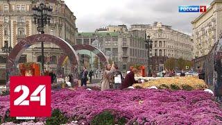 Золотая осень и межгалактическая встреча: выходные в Москве - Россия 24