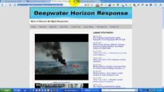 bp oil spill political seo