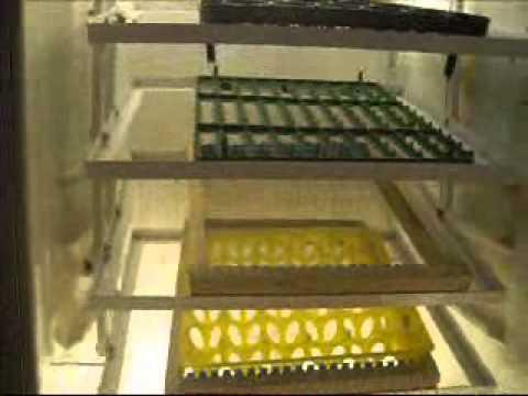 El Yapımı Tam Otomatik Kuluçka Makinesi