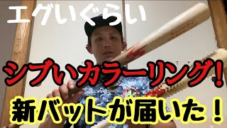 【新バット登場!】Achuに新相棒!激シブカラーリングのバットが届いた!