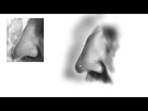 Profile of a Man's Nose