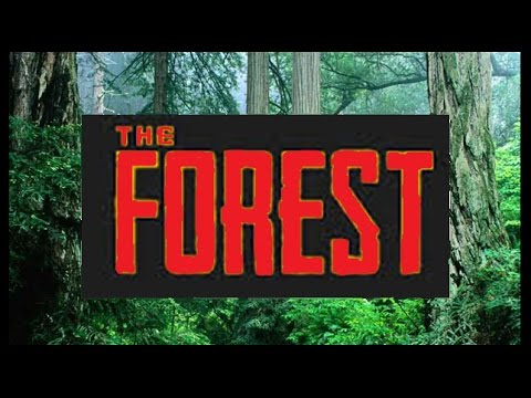 The Forest, Series 2 - Part 1: It's Good To Be Back!