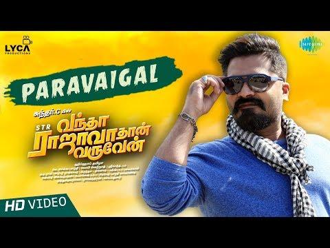 Paravaigal | Lyrical | Vantha Rajavathaan Varuven | STR | Hiphop Tamizha |Sundar C |Lyca Productions