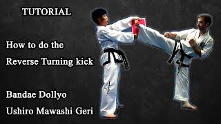 How to do the Reverse turning kick (Ushiro mawashi geri - Bandae dollyo chagy ) in-depth tutorial