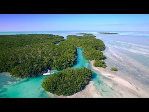 Florida Keys Overview Video