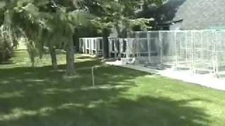 Dog Kennel: Designing And Building A With A Concrete Floor.