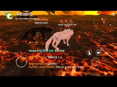 online casino guide wolf online spiele