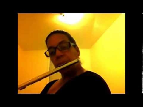 Silent Night, Holy Night. Enjoy for Christmas song. Flute Soloist.