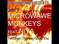 Microwave Monkeys featuring Nita 2017 U On My Mind Remix by DJ Dan Ross