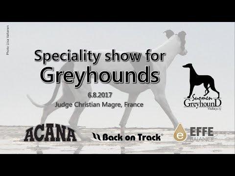 Finnish Greyhound Club Speciality Show 2017