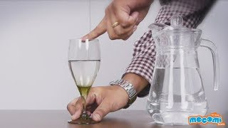 Wine Glass Sound Experiment - Science Projects for Kids | Educational Videos by Mocomi