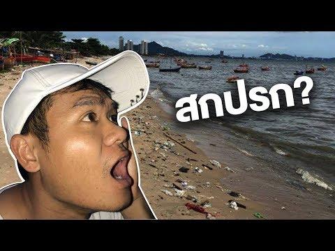 นี่หรือทะเลไทย?
