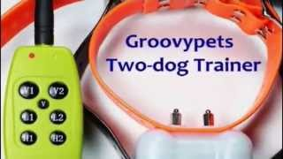 Buy Groovypets Remote Control Dog Trainer Collars For Two Dogs At Petproductsonline.info | Buy Usa!